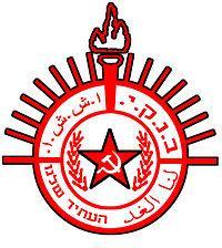 ycli-logo