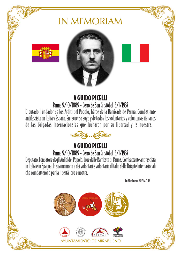picelli2013 2