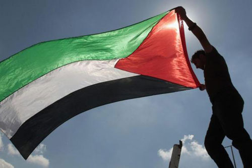 palestina bandiera uomo