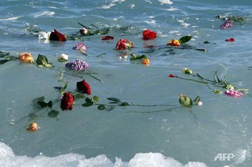 fiori mediterraneo