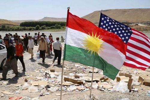 kurdos gringos