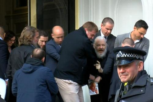 assange arresto