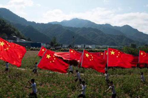 bandiere campi persone