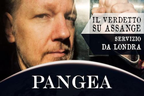 Assange dinucci